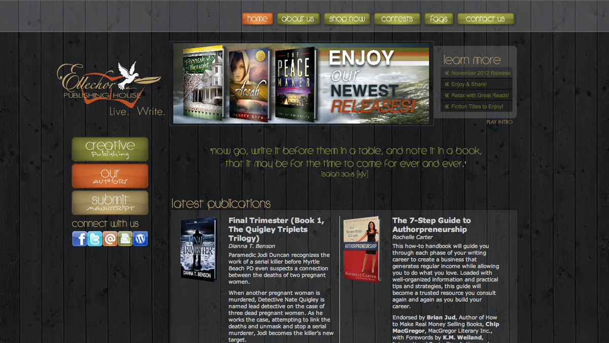 Publishing house business plan sample